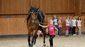 Pferdehoflinie112017dk0097