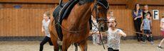 Pferdehoflinie112017dk0115