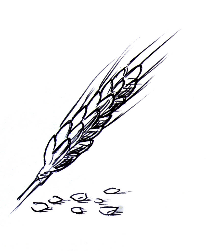 Dymke scribble lvz07 0012 ebene 29