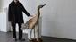 248 zweiseitenvogel  holz  dr. wolfgang kuwatsch  rostock