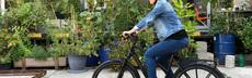 E bike 0108 ljb citybike pf
