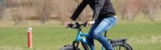 E bike dk trekking bike2 pf